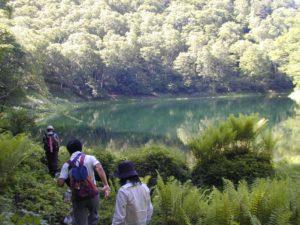 シラビソコースツアー(雄池)