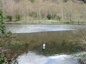 澄池(満水)