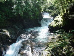 五色ヶ原の森 日雇声滝